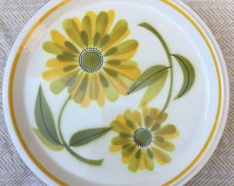 vintage mikasa fresh as spring dinner plate set