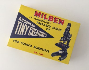 Assorted Tiny Creatures, Microscope Glass Slides, Vintage Milben, No. 703, 1950's-1960's Jewelry Supply, Science, Medical