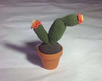 Cactus  plant crocheted in 7cm ceramic pot