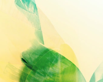 Palm Leaves Photograph, Mid Century Style, Jungalow, California Palms, Abstract Minimal, Modern Home, Bright Spring Green, Pink, Cream
