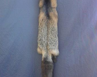 Real animal Tanned cross fox  Fur Pelt skin hide rug part weird man cave