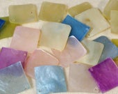 """23 Genuine Mussel Shell Square Drops 3/4"""" X 3/4"""""""