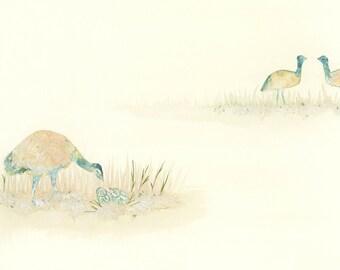 Limited Print 'Emu'