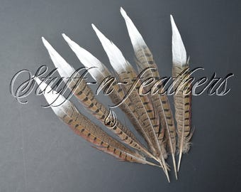 Natural pheasant feathers with SILVER tip, real feathers long ringneck painted silver millinery wedding party decor / 9-12 in long / F183S