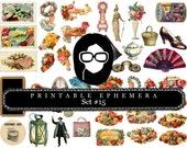 Digital Journal Kits - Ephemera Set #15 - 15 Pg Instant Download - digital collage, rose clipart floral, ephemera kit, blank journal vards