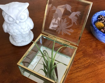 Vintage glass jewelry box - trinket box - jewelry box with gilded borders and floral decoration