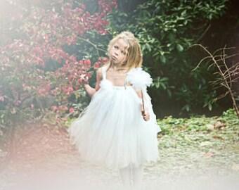 Snow Fairy Tutu Dress