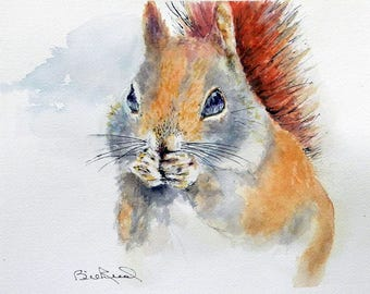 Little Red Squirrel - watercolor art print with mat