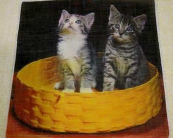Vintage Hankie Amazing Cat's in Basket Photo Hankie So Cute!