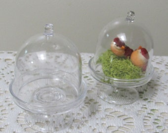Mini Cake Stand Boxes, Plastic Dome Cloche,  50 Party Favor Supplies, Petits Four Boxes, Fairy Garden Display Containers,