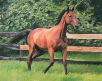 Custom Horse Oil Painting - Personalized Portrait on Canvas from Your Photo - Horse Art