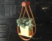 Vintage • Bentwood • Hanging • Plant Holder • Teardrop