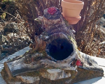 Manzanita Fairy House with Plantable Rooftop Garden
