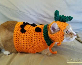 Pumpkin Cat Costume/Sweater (with or without pumpkin hat)