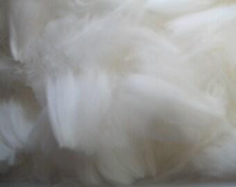 White Shorn Angora Fiber, White Angora Rabbit Fiber From Moonlight the Giant Angora, For Sale By the Ounce, White Rabbit Spinning Fiber