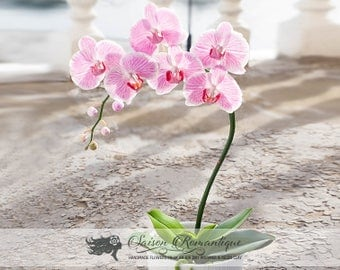 Orchid Phalaenopsis in the pot with 6 flowers - Polymer Clay Flowers