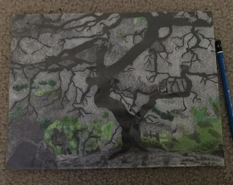 Japanese Maple Detailed Original Drawing by Artist Jordan Kimpton