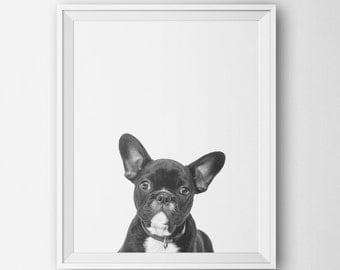 Puppy Art Print, Minimalist Black White Wall Decor, Modern Home, Dog Art, Digital Printable, Nursery Baby Animal Dog Photography Minimalist