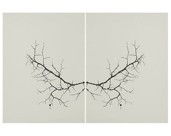 Abstract Modern Photography Black and White Fine Art Photography Tree Branches Butterfly Effect Minimalist Art Living Large Wall Art decor