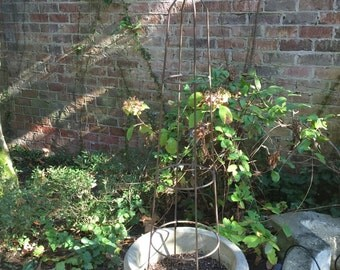 Iron Topiary, Single Iron Garden Topiary,  48 Inches, French Country Garden Decor, Cottage Farmhouse Garden Decor,