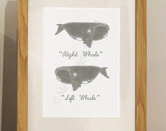 Right Whale, Left Whale Framed Print