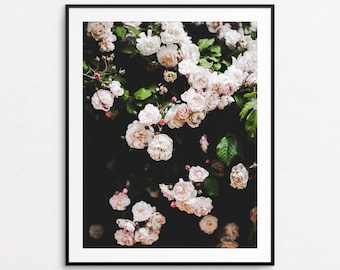 Roses Photograph - Floral Photography, Springtime in Paris, Home Decor, Pink, White, Floral Print Art, Floral Wall Art, Roses Wall Art