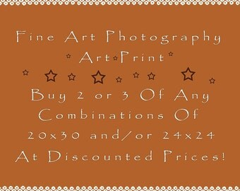 Art Sale, Fine Art Photographs, Fine Art Print - Choose Any 2 or 3 of (Any Combinations) 20x30 and/or 24x24 Photographs at Discounted Prices