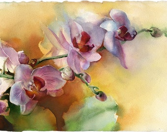 Flower watercolor painting - original painting - watercolor orchid painting - purple orchid