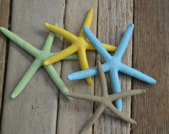 "Painted Starfish, ""Surf's Up"" 
