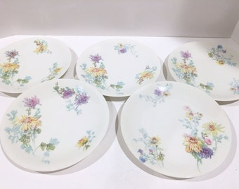 Limoges France Plates, D and C Plates, French Limoges Plates, Flowered Limoges Plates, Antique Limoges Porcelain