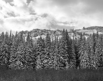 Mt Hood Photograph, Oregon Cascades, Mt Hood Print, Black&White, Mirror Lake, Oregon Print, Snowy Mountains Photograph, Pacific Northwest