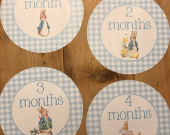 Monthly Growth Stickers Baby Month to Month Stickers Set of 12 Months-Boy blue Peter Rabbit Beatrix Potter 1-12 months Baby Shower Gift