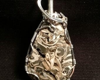 Petrified Clam Shell #277