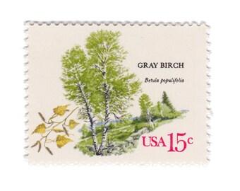 10 Unused Vintage Postage Stamps - 1978 15c American Trees Series - Gray Birch - No. 1767