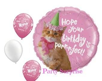 Cat Kitten Birthday Balloon Package Kitty Birthday Balloon Cat Lovers Birthday Balloons