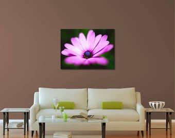 Flower Photography, Purple Flower Print, Nature Print, Macro Photography, Fine Art Photography, Macro Print, Art Photography, Flower Print