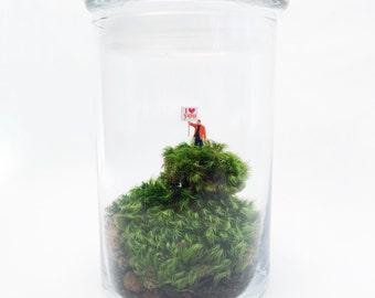 I Love You! Moss Terrarium, Glass Terrarium, DIY Terrarium Kit