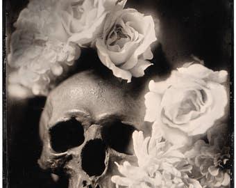Mea Culpa, Fine art wet plate collodion photograph