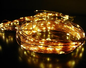 Extra Long Fairy Wire - Warm White - in Silver or Copper wire.  100, 200, or 300 feet of lights.  Plug in to the wall (US/Canada only).