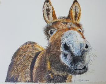 Lunch time!!!!!! Donkey Giclee Print