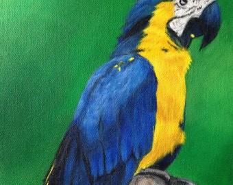 Original Acrylic Parrot Painting, 9 x 12 Canvas, Blues, Green and Yellow, Birds, Home Decor