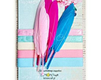 Lemoncraft Daydream Feathers and Ribbon Set