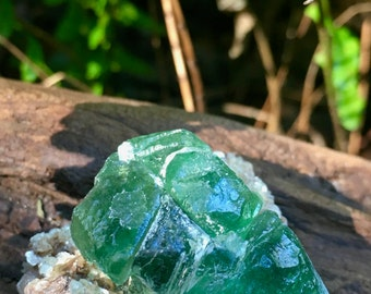 Namibian Fluorite Crystal with Muscovite 35 gm, Namibia, Muscovite, Mineral Specimens, Reiki, Healing Crystals, Altar Stones
