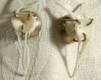 Bone Earrings No. 1