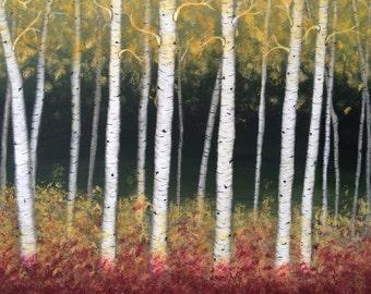 Birch trees in early fall.