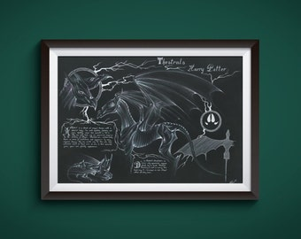 Large - Thestrals - Harry Potter Art Print