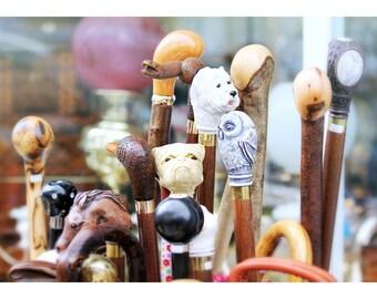 walking sticks, vintage walking sticks, London England, travel photography, foyer home decor, London home decor, London antique shop, 11x14