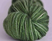 Nettles ~ Rapunzel (sock/fingering weight) ~ Blue Faced Leicester Wool with Nylon ~ 355 yards