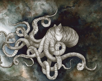 Octopus Illustration Art Print 01