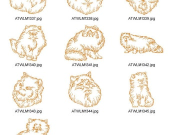 CAT-BREEDS-Himalayan. ( 10 Machine Embroidery Designs from ATW )
